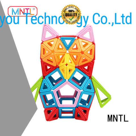MNTL Hot building block discovery kids magnetic blocks purple For kids